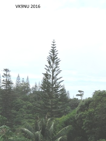 View at Burnt Pine, Norfolk Island